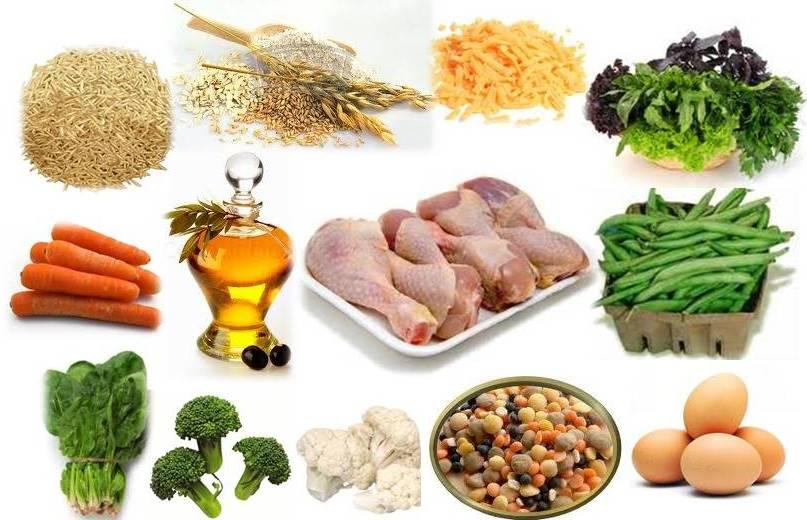 Metabolic Weight Loss Grain Free Dog Food